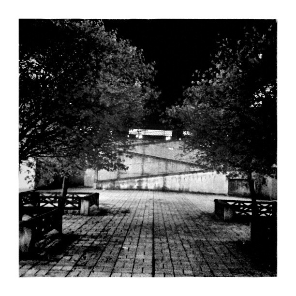 Night city park - from Instagram