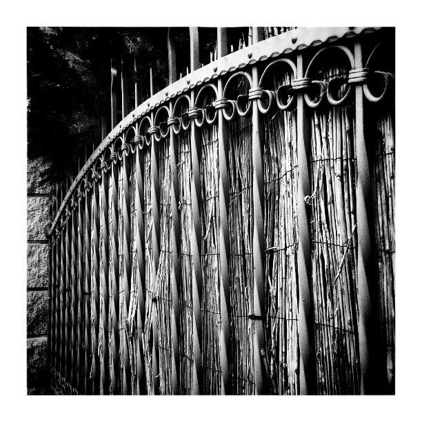 Garden fence - from Instagram
