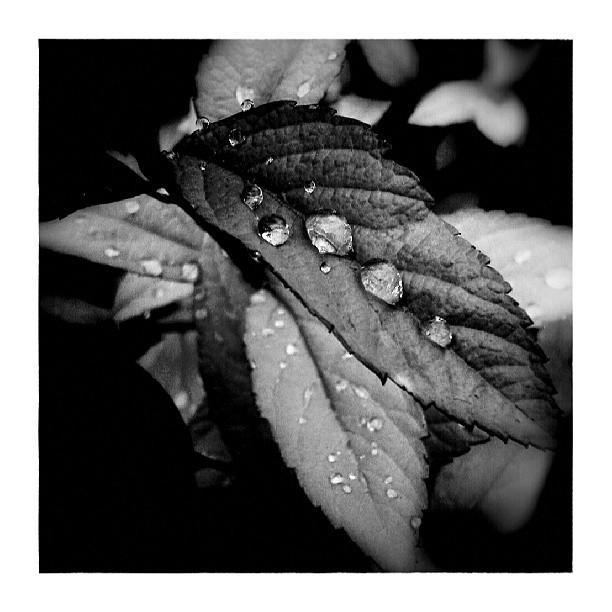 Melting hail - from Instagram