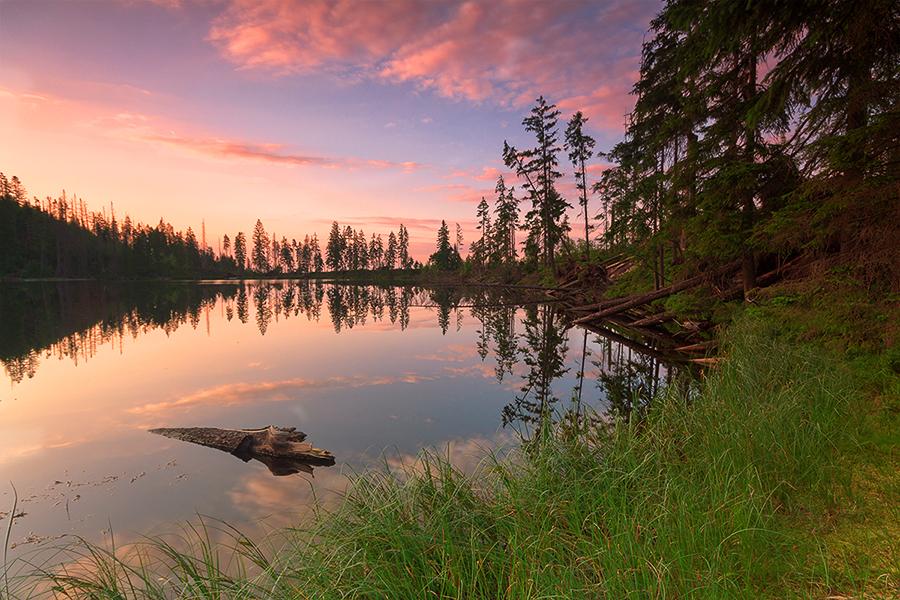 Peaceful evening at lake